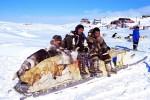 Müssen vor den Gefahren der Ice Bucket Challenge gewarnt werden: kanadische Inuit.