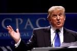 Experten gehen davon aus, dass sich Trump mittlerweile selbst um die Pflege seines Haupthaars kümmert. Mit einem Staubsauger und einer rostigen Gartenschere.